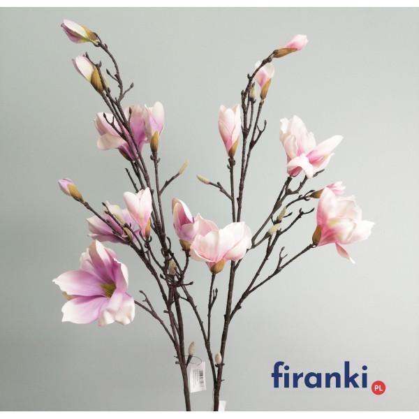 magnolia-duza-galazka-w-odcieniach-fioletu.jpg